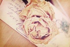关闭干燥玫瑰色和老明信片 柔光葡萄酒样式 库存照片