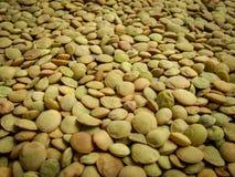 关闭干绿色扁豆 作为背景的绿色扁豆样式 免版税库存图片
