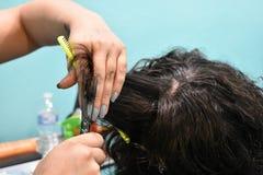关闭得到头发裁减的年轻人 免版税库存照片