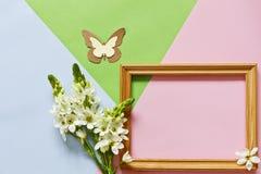 关闭愉快的母亲` s天,妇女`的s照片天,华伦泰` s天或生日在柔和的淡色彩糖果颜色背景 图库摄影