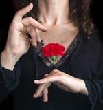 关闭拿着一支红色康乃馨的安达卢西亚的妇女反对她 库存图片