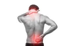 关闭摩擦他痛苦的后面的人 镇痛,按摩脊柱治疗者概念 免版税库存图片