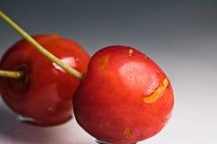 关闭新鲜的可口鲜美甜樱桃宏指令与水蠕虫叮咬滴和踪影的在灰色梯度背景的 库存图片