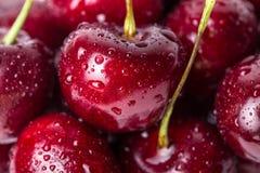 关闭新鲜的樱桃莓果。 库存照片
