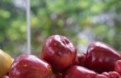 关闭新鲜的红色苹果 免版税库存图片