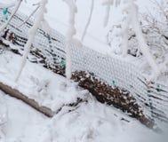 关闭新鲜的雪涂层和层在庭院铁丝网 免版税图库摄影