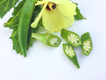 关闭新鲜秋葵果子Abelmoschus esculentus在绿色叶子并且切在白色背景 库存图片