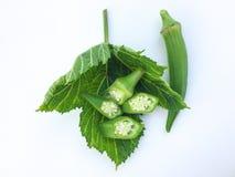 关闭新鲜Abelmoschus esculentus在绿色叶子并且切在白色背景 免版税图库摄影