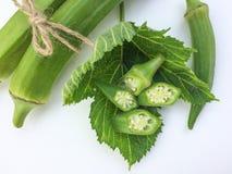 关闭新鲜Abelmoschus esculentus在绿色叶子并且切在白色背景 库存图片