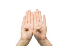关闭显示八个手指的两只手 免版税图库摄影