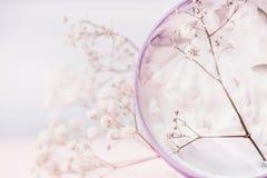 关闭有化妆奶油和花的瓶子,自然化妆产品或者秀丽概念在淡色背景 库存图片