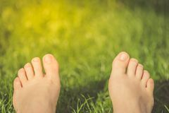 关闭有赤裸脚的女性腿在绿草在好日子 库存照片