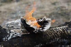 关闭木头在火烧 与火焰被烧焦的木头的美好的火 免版税库存图片