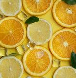 关闭柠檬橙色叶子立方体冰海壳柑橘Patte 免版税库存图片