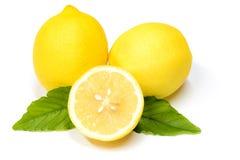 关闭柠檬用在白色后面的绿色叶子切成了两半 库存图片