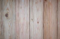 关闭桃红色金子木纹理和自然样式背景 免版税库存图片