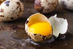 关闭残破的鸡蛋用黄色卵黄质 免版税图库摄影