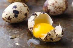 关闭残破的鸡蛋用黄色卵黄质 库存图片
