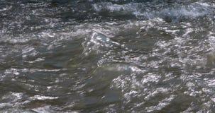 关闭水小河 山河水 股票视频