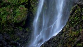 关闭流动到湿气岩石峭壁的瀑布在深森林 库存照片