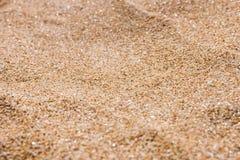 关闭海海滩沙子或沙漠沙子 免版税图库摄影
