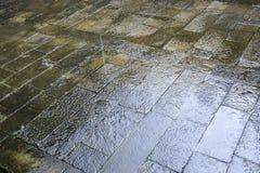 关闭湿路纹理 免版税库存照片