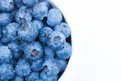 关闭演播室被射击一束在一个白色碗的新鲜的蓝莓 库存图片