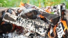 关闭热的灼烧的木柴看法  股票视频
