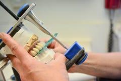 关闭牙清洁保健员 库存图片