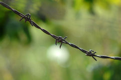 关闭生锈和难看的东西铁丝网 库存图片