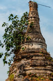 关闭生长寺庙的树 库存照片