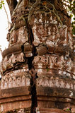 关闭生长寺庙的树 图库摄影