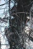关闭电线缆绳被缠结和混乱在Thamel Stree 免版税库存图片