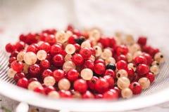 关闭白色和recd无核小葡萄干莓果 免版税库存照片