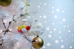 关闭白色圣诞节快乐和pom poms球在冷杉分支有bokeh背景 免版税图库摄影
