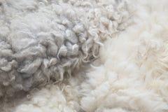 关闭白色被洗染的羊皮地毯作为背景 库存照片