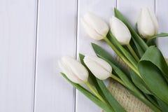 关闭白色郁金香和白纸或者在上写字 免版税库存照片