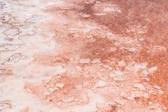 关闭盐沼的盐沼在婆罗双树佛得角- Cabo Ver 库存照片