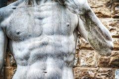 关闭米开朗基罗的大卫在广场della Si的雕象胸口 免版税库存图片