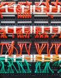 关闭红色和绿色网络缆绳被连接到开关 库存图片