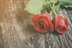 关闭红色在木背景的玫瑰花 库存照片