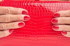 关闭红色皮革钱包在女性手上 免版税库存图片