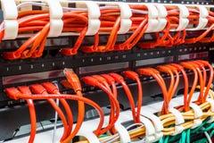 关闭红色网络缆绳被连接到开关 库存图片
