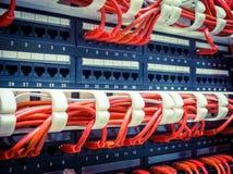 关闭红色网络缆绳被连接到开关 免版税库存图片