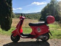 关闭红颜色租的葡萄酒滑行车由在托斯坎风景的锡耶纳大黄蜂类 库存照片
