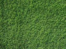 关闭纹理细节绿草顶视图背景的,自然体育概念 免版税库存照片