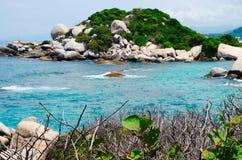 关闭绿色植物有海滩美丽的景色在被弄脏的背景中在Cabo圣胡安,自然的Tayrona 免版税库存图片