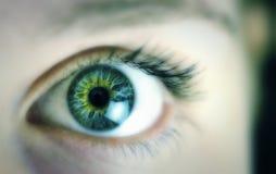 关闭美丽的眼睛 免版税库存图片