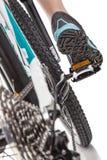 关闭背面图骑自行车者踩的踏板的登山车 库存图片
