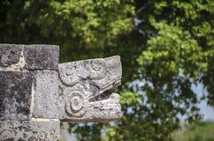 关闭蛇头在奇琴伊察,世界的奇迹 免版税图库摄影